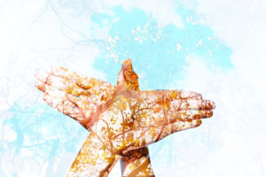 Emotional Freedom Technique Hands