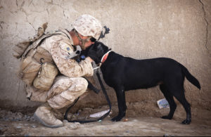 soldier-and-black-dog-cuddling